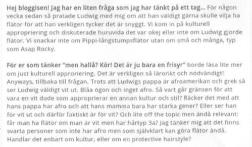 Zara Larssons blogginlägg